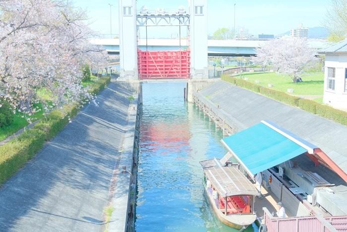 京都伏見十石舟周辺の桜スポット 三栖閘門