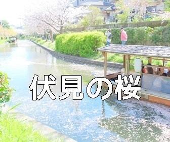 京都・桜の撮影スポット 伏見十石舟