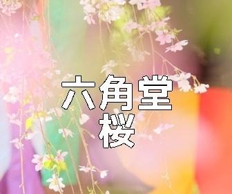 京都・桜の撮影スポット・原谷苑