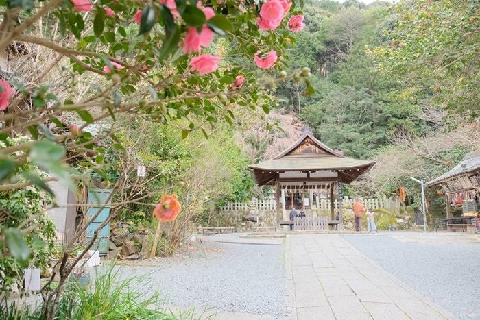 大豊神社の撮影スポット