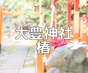 京都・椿の撮影スポット・大豊神社