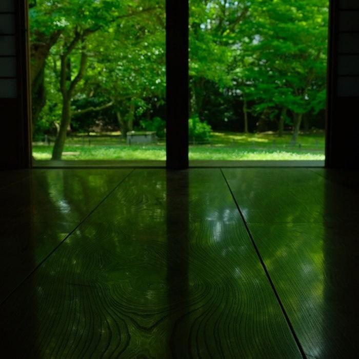 閑院宮亭跡写真撮影スポット2:床みどり