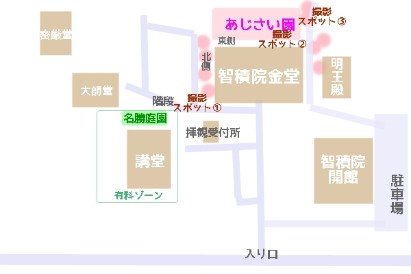 智積院境内 紫陽花撮影ポイントマップ