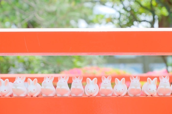 岡崎神社のうさぎみくじ 正面画像