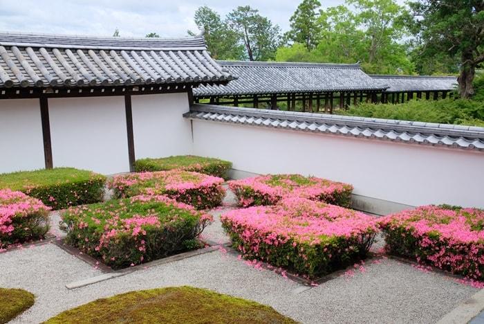 東福寺の八相の庭のさつき