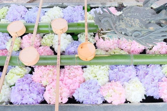 楊谷寺の紫陽花 インスタ映え花手水