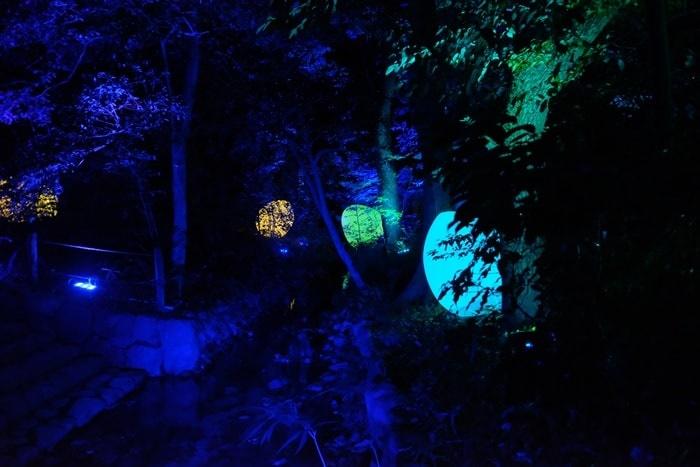 糺の森のならの小川に浮かぶ光のたまごのアート