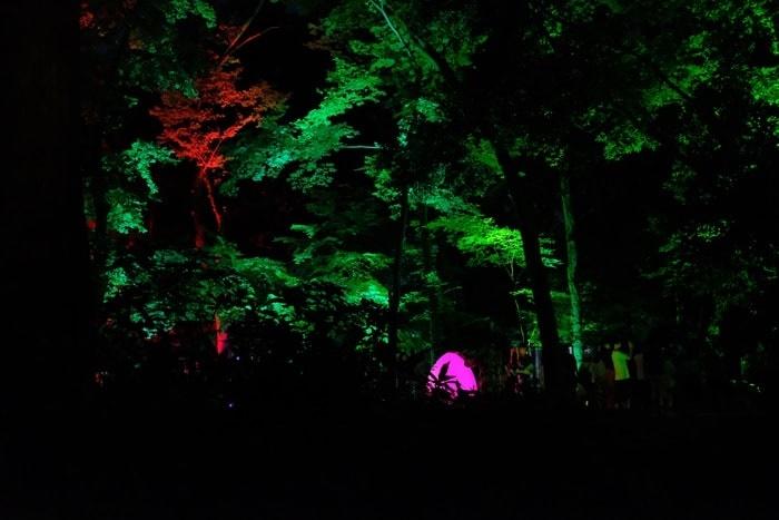 下鴨神社 糺の森の待ち列から見るライトアップ