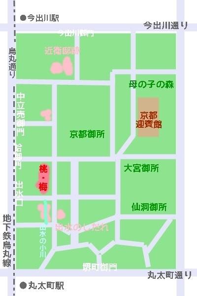京都御苑 桜マップ