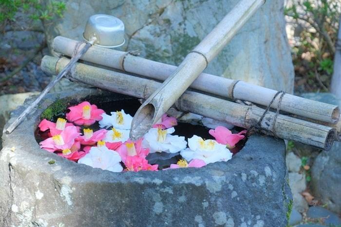 十輪寺の花手水