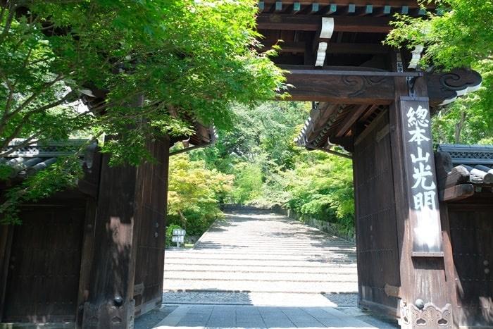 光明寺の総門と青もみじ