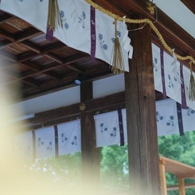 松尾大社のふたば葵の紋