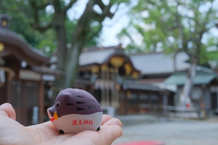 護王神社のイノシシおみくじ
