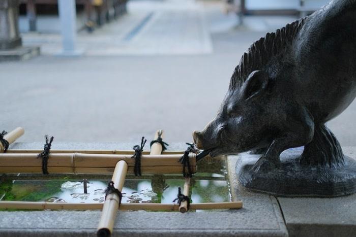 護王神社の花手水