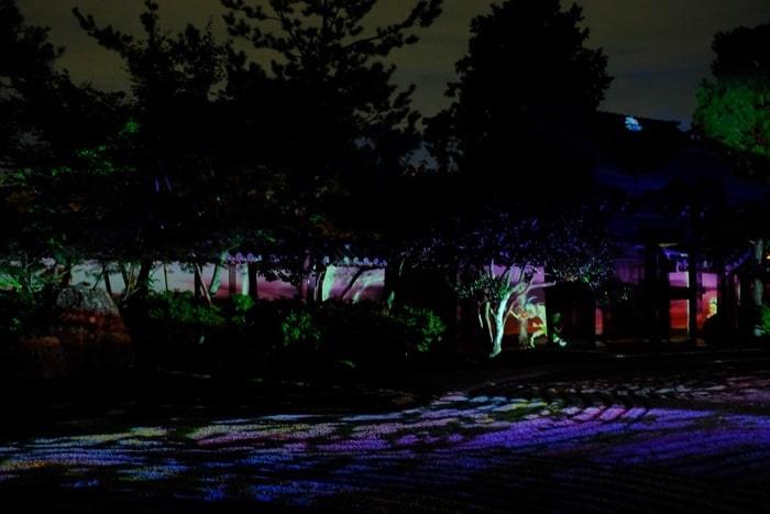 高台寺 夜景 プロジェクトマッピング
