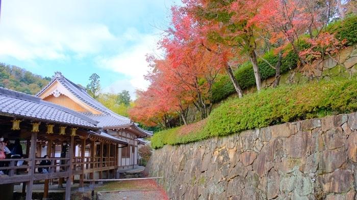 光明寺建物と紅葉