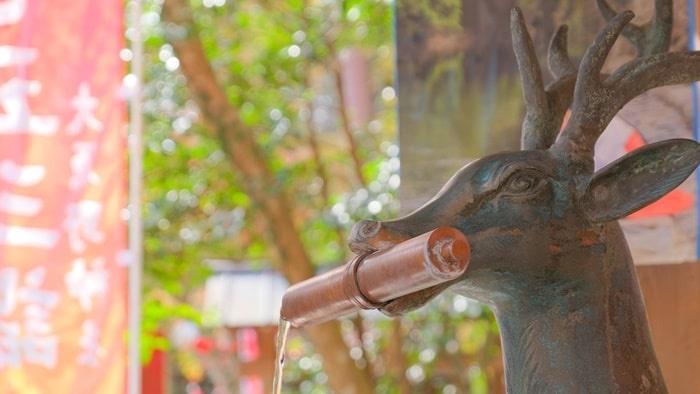 大原野神社の手水舎の鹿