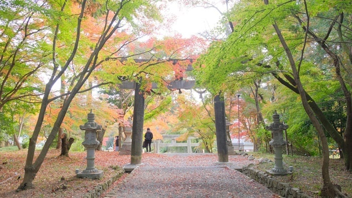 大原野神社の紅葉 鳥居~参道