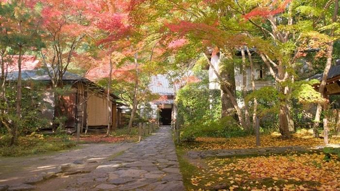 蓮華寺の門入ってすぐ