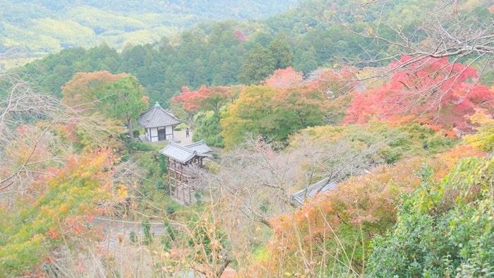 善峯寺 山頂から見下ろす紅葉景色