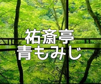 京都・青もみじの撮影スポット・嵐山祐斎亭